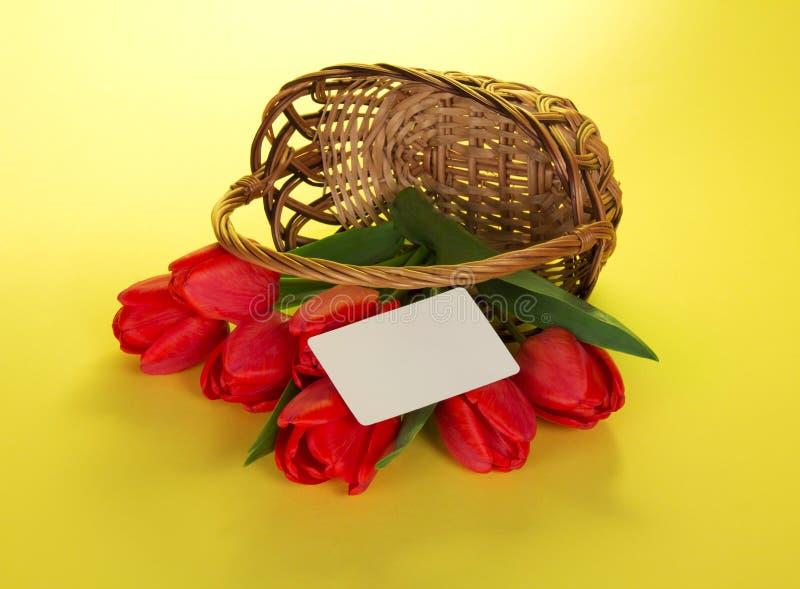 Download Czerwoni Tulipany Które Opuszczali Z Kosza Obraz Stock - Obraz złożonej z rocznica, kolor: 41954355
