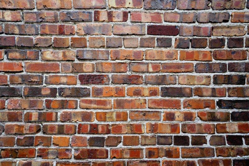 Czerwony ściana z cegieł, tło obraz royalty free