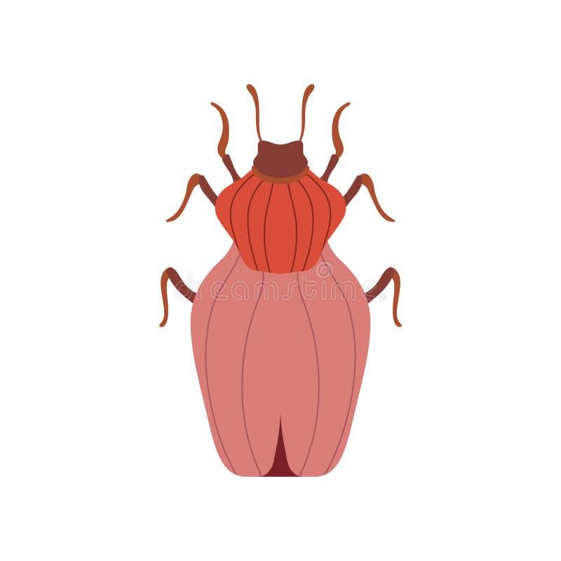 Czerwony ściga insekt, pluskwa Odgórnego widoku wektoru ilustracja ilustracja wektor