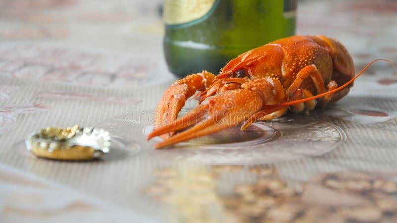 Czerwony apetyczny gotowany nowotwór na tle piwna butelka obrazy royalty free