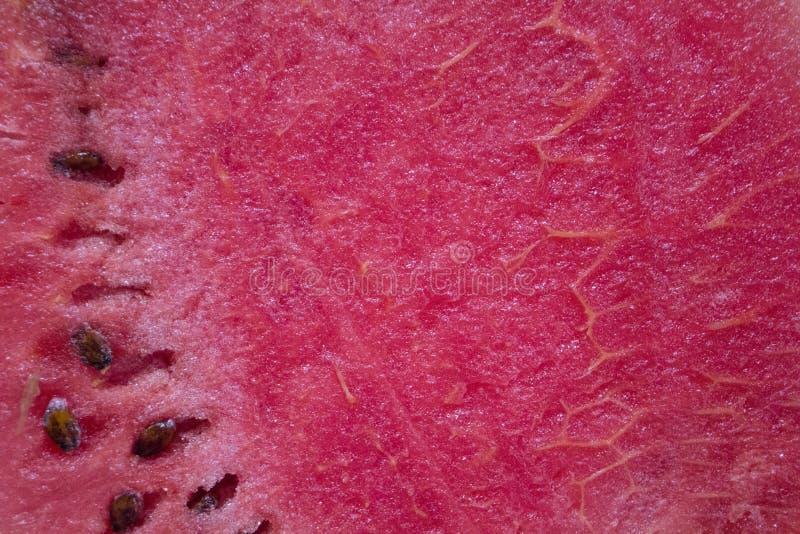 Czerwony arbuza cięcie z czarnymi ziarnami Dojrzała owoc z zieloną skórą zdjęcie royalty free
