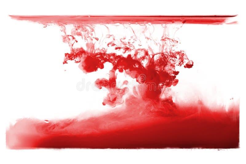 Czerwony atrament kropli pluśnięcie rozproszony na białym tle fotografia royalty free