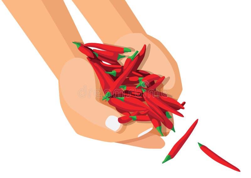 Czerwony chili pieprz w r?ce ilustracji