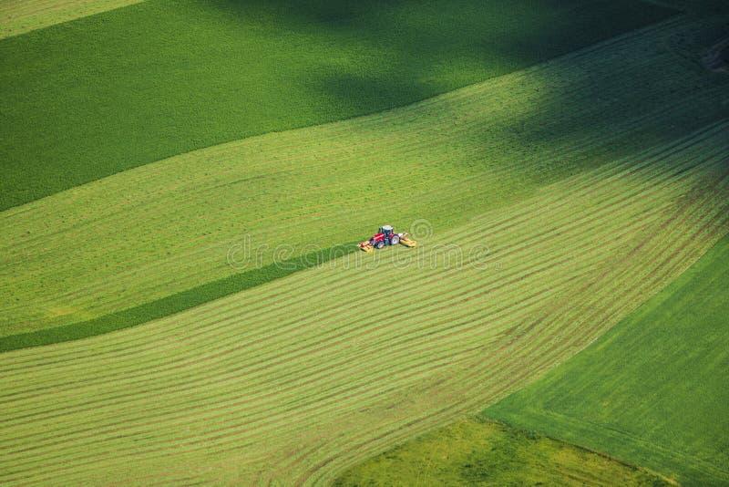Czerwony ciągnikowy działanie na pięknym zieleni polu w lecie - ptak ey obrazy stock