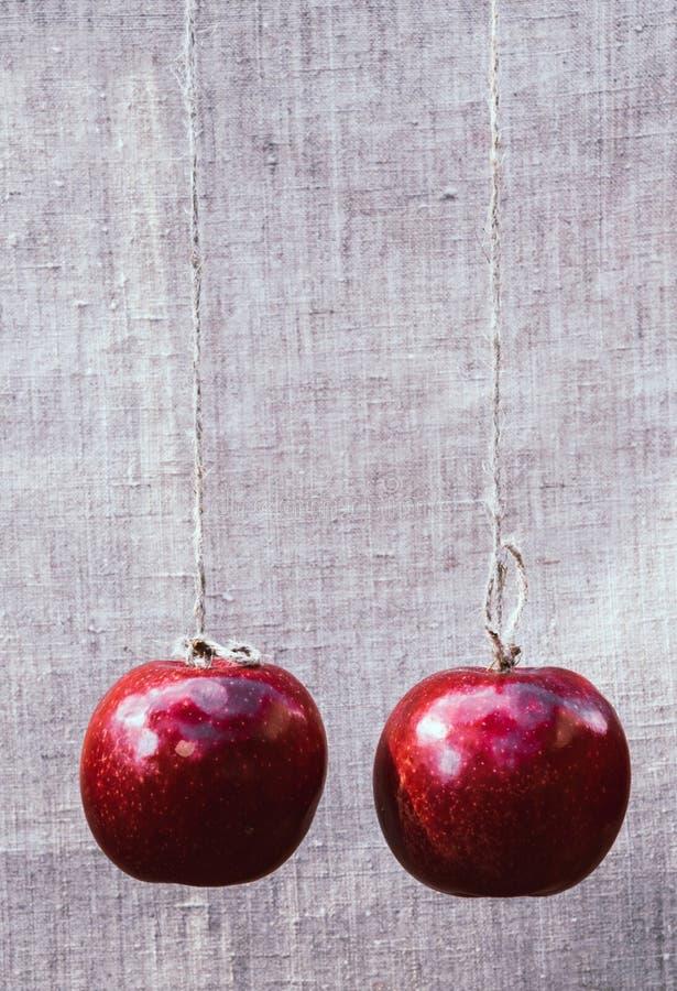 czerwony dojrzałe jabłko Jesieni żniwo owoc zdjęcie stock