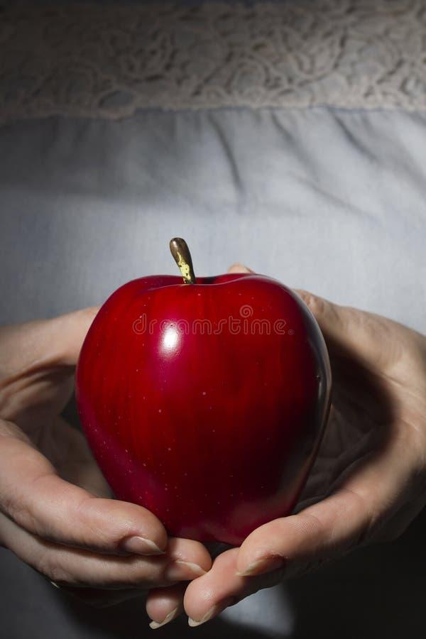 Czerwony dojrzały jabłko w rękach obraz stock