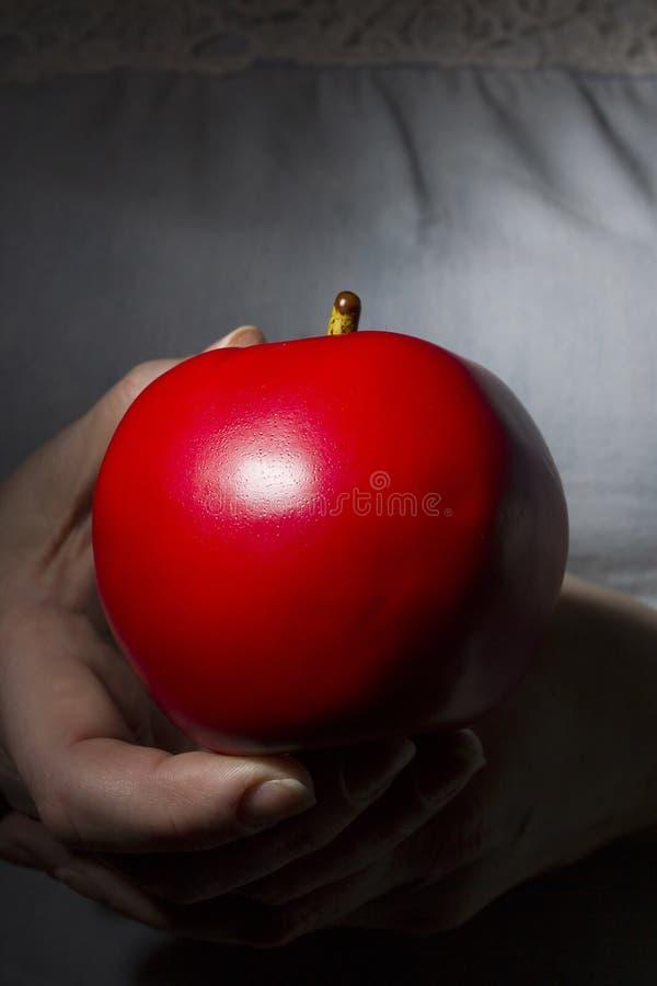 Czerwony dojrzały jabłko w rękach obrazy stock