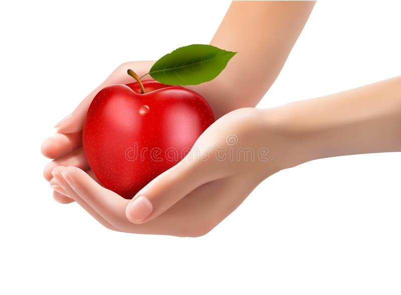 Czerwony dojrzały jabłko w ręki. Pojęcie dieta. royalty ilustracja