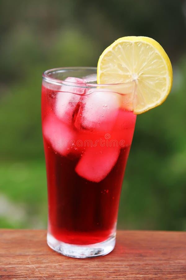 czerwony drinka fotografia stock
