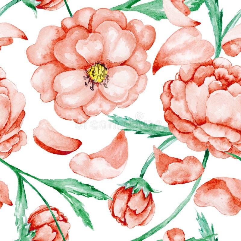 Czerwony dziki róża wzór ilustracja wektor