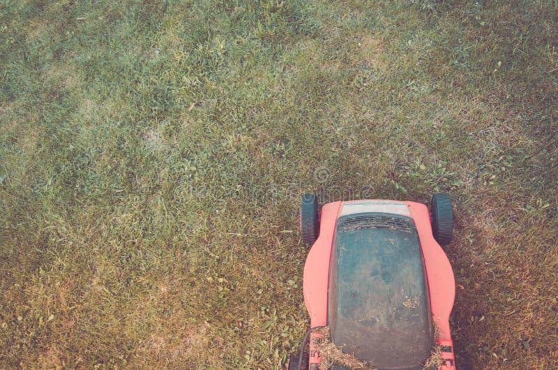 Czerwony gazonu kosiarz ciie zielonej trawy, czerwonej gazonu kosiarza rozcięcia zieleni/ obrazy royalty free