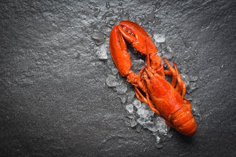 Czerwony homara owoce morza z lodem na ciemnego backgroud odgórnym widoku zdjęcie stock