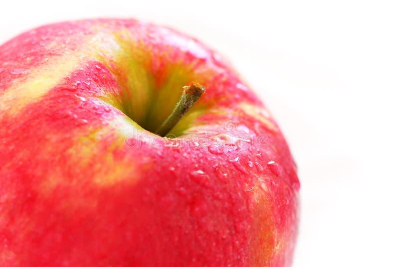 czerwony jabłczana obraz stock