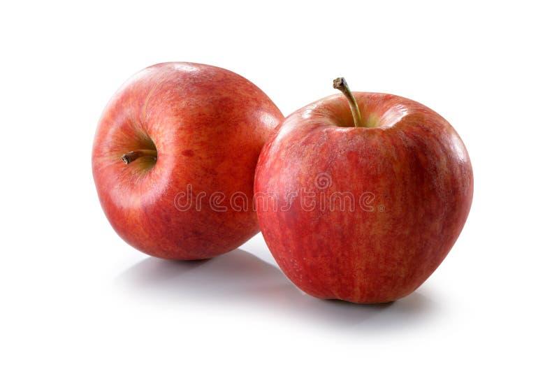 Czerwony jabłka zakończenie odizolowywający na bielu zdjęcie royalty free