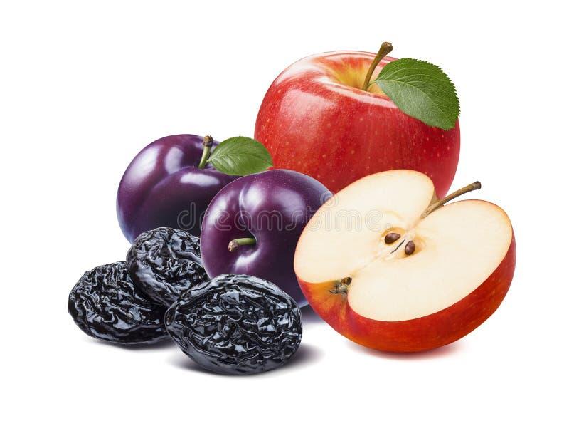 Czerwony jabłko, purpurowe śliwki odizolowywający na białym backgr, świeże i wysuszone zdjęcia stock