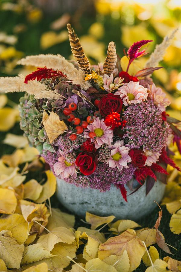 Czerwony jesień bukiet róże, jagody, chryzantemy i piórka w wazie od bani na trawie z spadać liśćmi, zdjęcia stock