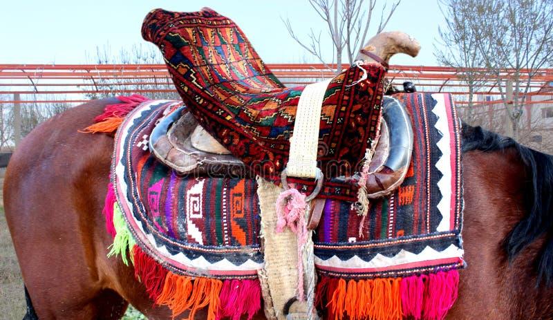 Download Czerwony koń zdjęcie stock. Obraz złożonej z piękno, horsepower - 57666704