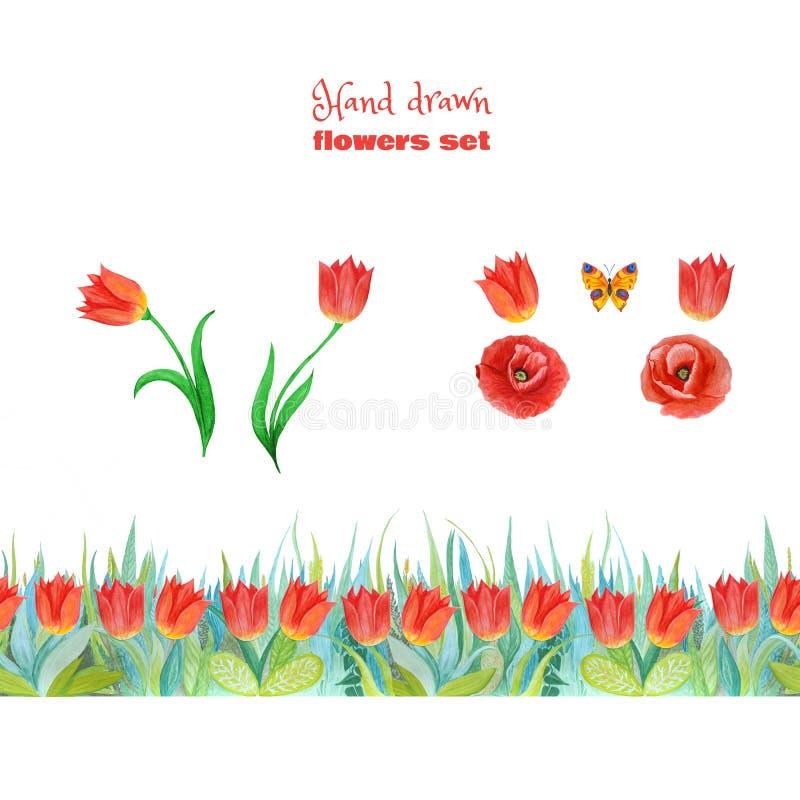czerwony komplet kwiaty Maczki, tulipany i zielona trawa, rabatowy kwiecisty bezszwowy ilustracji