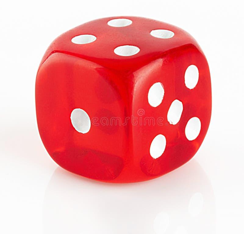czerwony kostka do gry biel zdjęcia royalty free