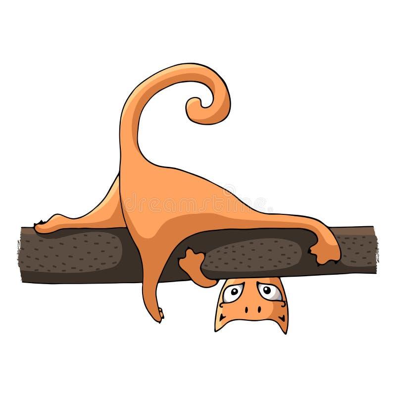 Czerwony kot kłama na gałąź zdjęcie royalty free