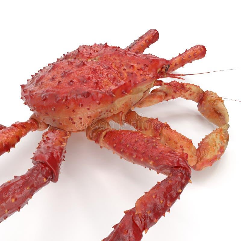 Czerwony królewiątko krab Kamchatka Odizolowywający Na Białym tle ilustracja 3 d ilustracja wektor
