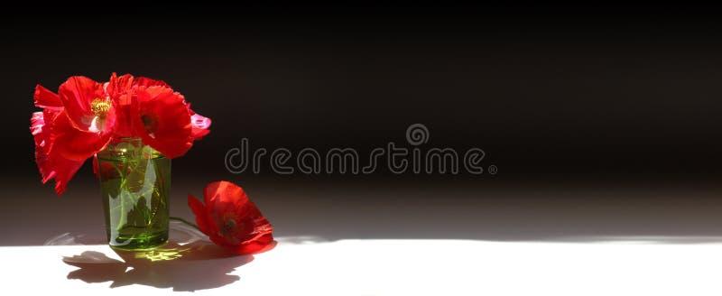 Czerwony maczka sztandar obrazy stock