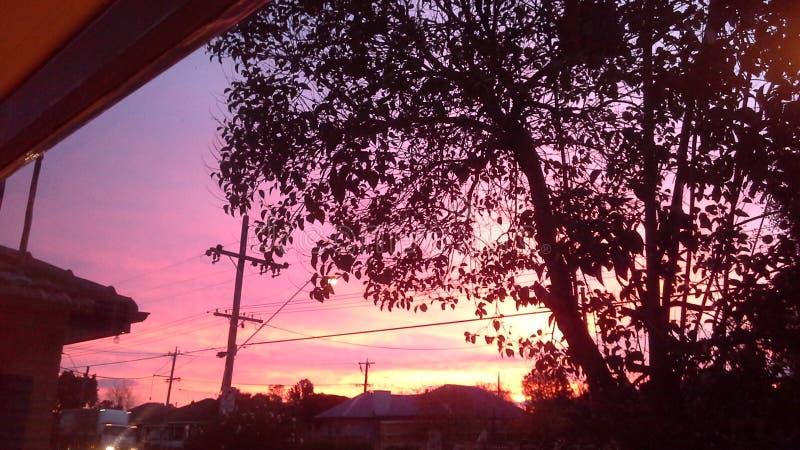 Czerwony niebo przy nocy shepards zachwytem fotografia royalty free