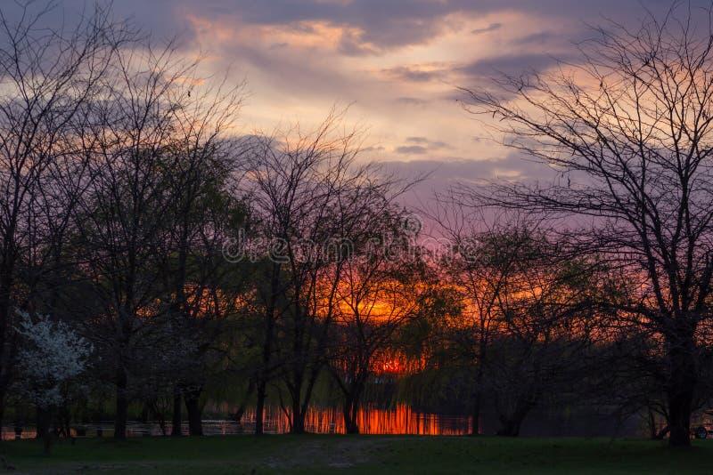 Czerwony ognisty zmierzch na malarskim krajobrazie z drzewami które odbijają w rzece pod bezbrzeżnym błękitnym wieczór nieb fotografia royalty free