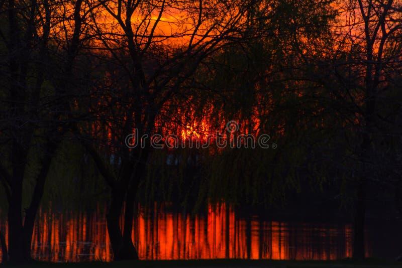 Czerwony ognisty zmierzch na malarskim krajobrazie z drzewami które odbijają w rzece pod bezbrzeżnym czerwonym wieczór niebem zdjęcia stock