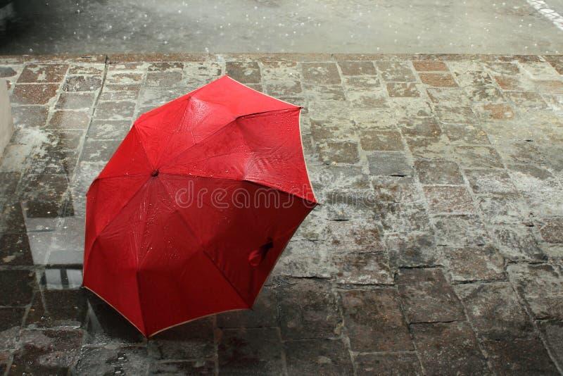 czerwony parasol obrazy royalty free