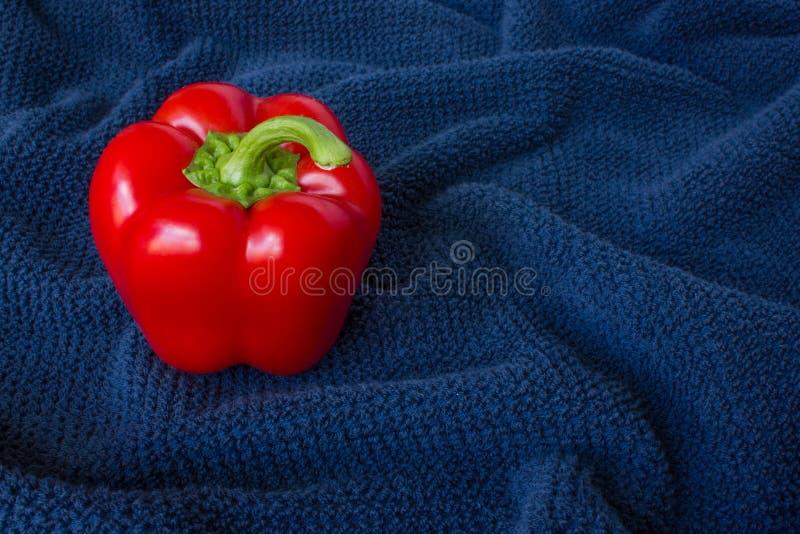 Czerwony pieprz na błękitnym tle fotografia stock