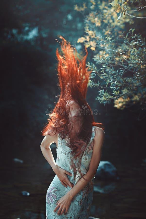 Czerwony podmuchowy włosy obraz royalty free