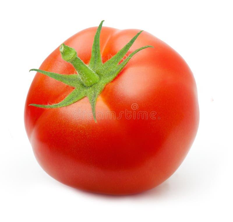Czerwony pomidor odizolowywający obraz royalty free