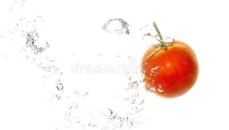 Czerwony pomidor pod wodą na białym tle obrazy royalty free