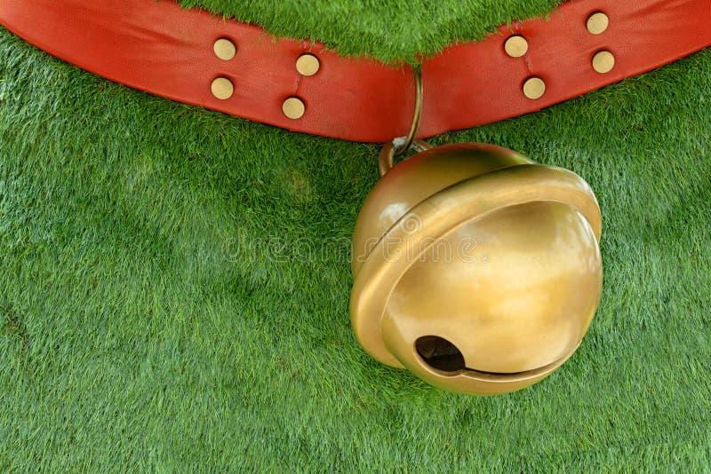Czerwony psi kołnierz robić od skóry dekoruje z szpilkami wiesza dużego złotego dzwon na zielonej trawy tle z kopii przestrzenią zdjęcie stock