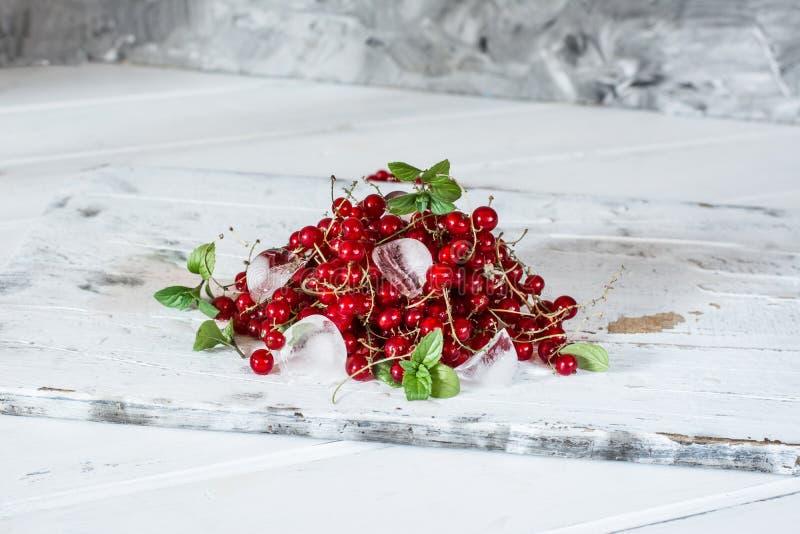 Czerwony rodzynek z lodem i zielenią opuszcza na białym drewnianym tle wciąż życie jedzenie Sześciany lód z jagodami fotografia stock