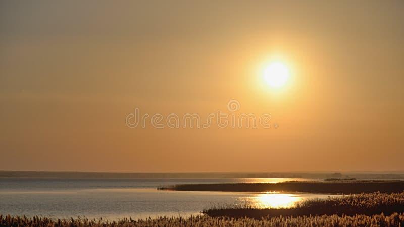 Czerwony słońce przy tła niebem przy zmierzchem w bagna zdjęcie royalty free