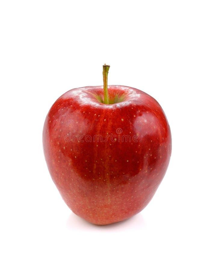 Czerwony słodki jabłko odizolowywa na białym tle obraz royalty free