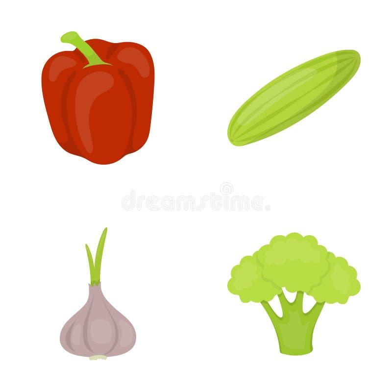 Czerwony słodki pieprz, zielony ogórek, czosnek, kapusta Warzywo ustawiać inkasowe ikony w kreskówka stylu symbolu wektorowym zap ilustracji