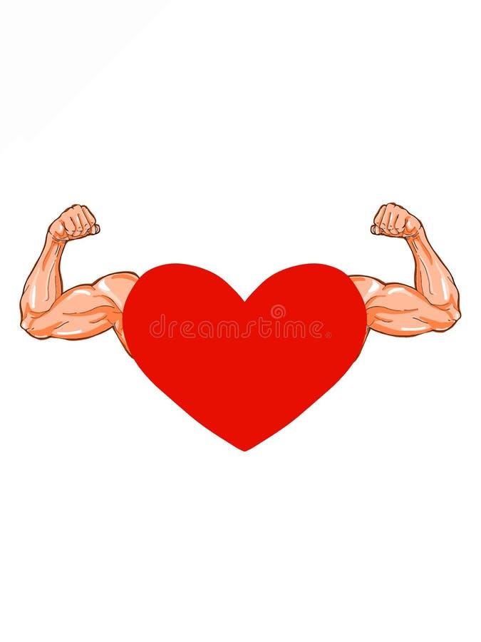 Czerwony serce i silne ręki ilustracyjni royalty ilustracja
