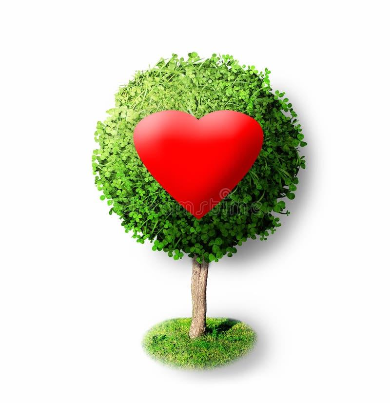 Czerwony serce na zielonym drzewie fotografia stock