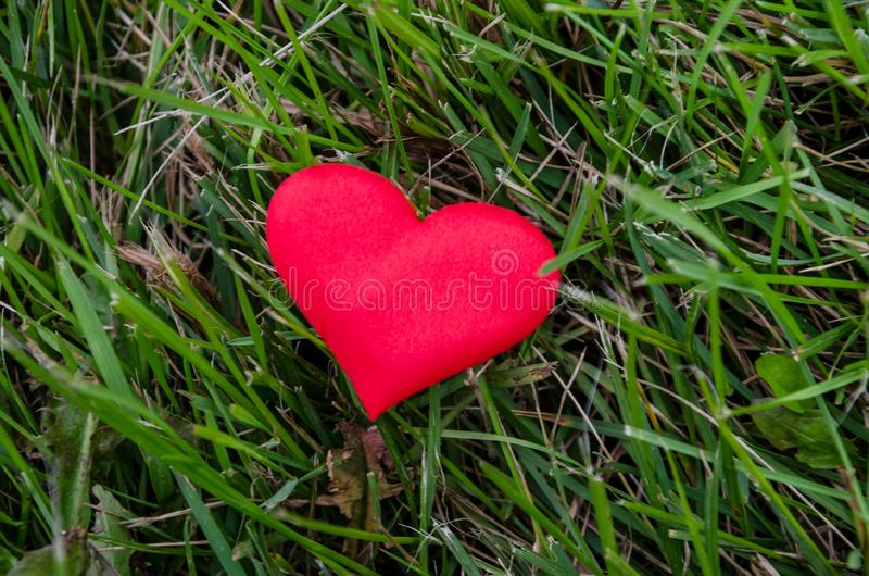 Czerwony serce na zielonym tle, odg?rny widok zdjęcie stock