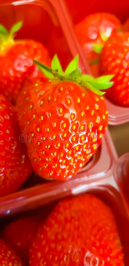 Czerwony truskawkowy owocowy wyśmienicie obrazy royalty free