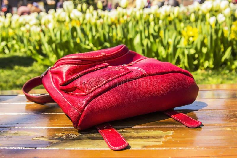 Download Czerwony Turystyczny Plecaka I Tulipanu Festiwal Zdjęcie Stock - Obraz złożonej z może, tulipan: 53777988