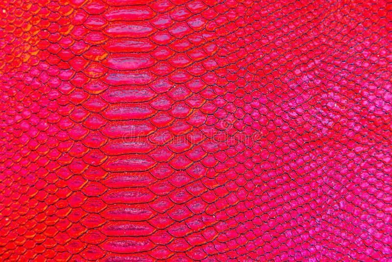 Czerwony wąż lub smok tekstury szalkowy druk obraz royalty free
