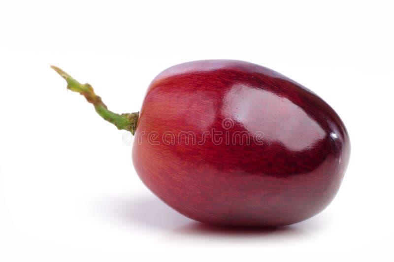 Czerwony winogrono odizolowywający. zdjęcia royalty free