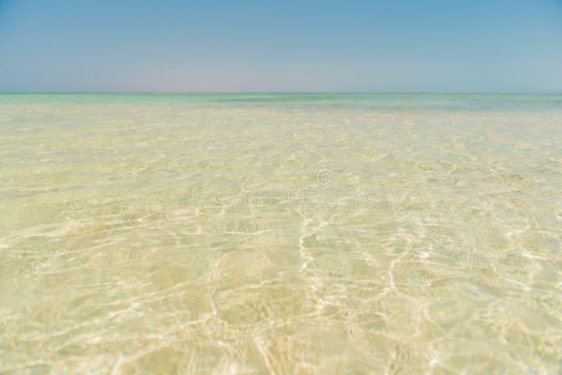 Czerwony wody morskiej wybrzeże zdjęcia royalty free