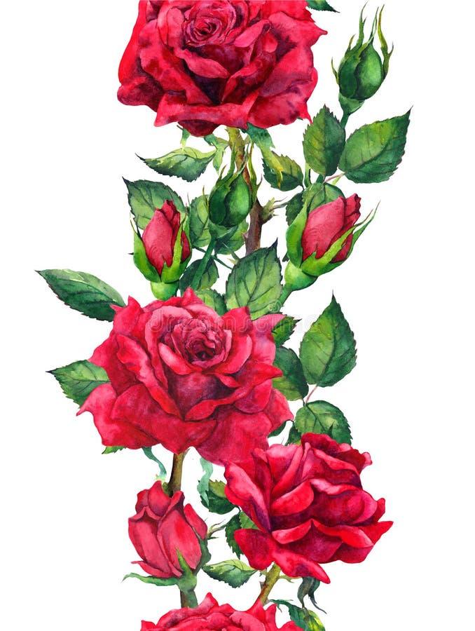 Czerwonych róż kwiaty - kwiecista bezszwowa granica Akwareli rama royalty ilustracja