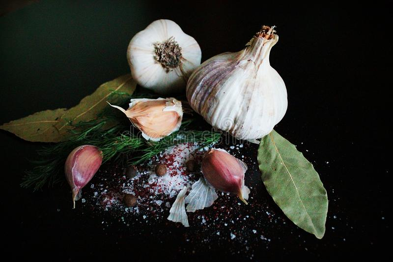 Czosnek natury soli pieprzu karmowy koper zdjęcia stock