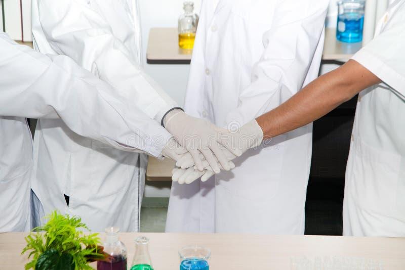 Czterech naukowców stojących w ramię, aby pokazać, że eksperyment zakończył się sukcesem, który reprezentuje jedność i zjednoczen fotografia stock